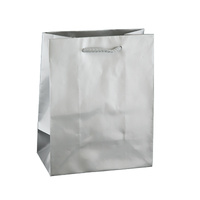 Silver Glossy Laminated Paper Bags - Baby