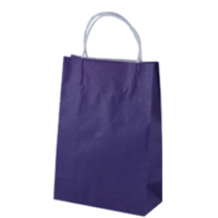 Purple Kraft Paper Bags - Junior