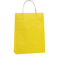 Yellow Kraft Paper Bags - Medium