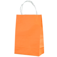 Orange Kraft Paper Bags - Junior