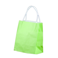 Lime Kraft Paper Bags - Toddler