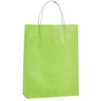 Lime Kraft Paper Bags - Medium