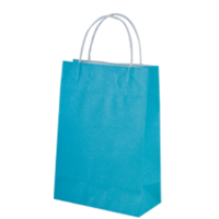 Blue Kraft Paper Bags - Junior, 250 pcs