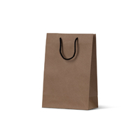 Deluxe Brown Kraft Paper Bags - Junior