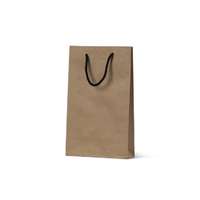 Deluxe Brown Kraft Paper Bags - Small