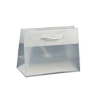 White Frosted Plastic Bag - Small Boutique (Rope Handle)